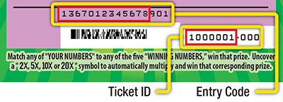 Scratchers 2nd Chance code on ticket