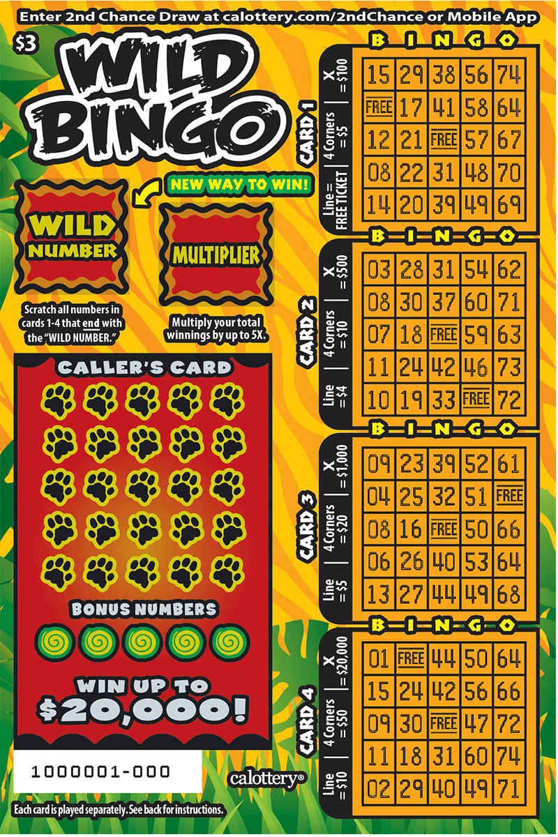 $3 Wild Bingo unscratched ticket
